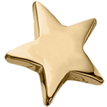 14K Gold Star Accent